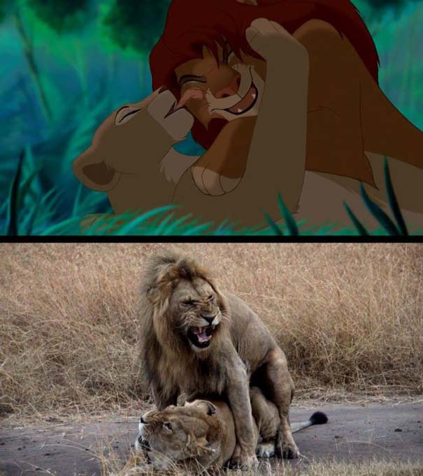 Η ταινία «The Lion King» στην πραγματικότητα (2)