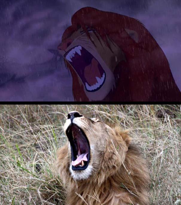 Η ταινία «The Lion King» στην πραγματικότητα (8)