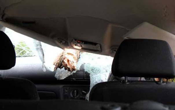 Δυο γυναίκες γλίτωσαν από ασυνήθιστο τρομακτικό ατύχημα (8)