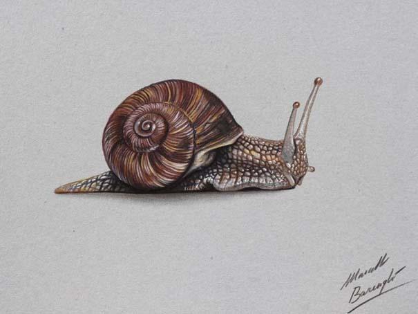 Απίστευτες υπερρεαλιστικές ζωγραφιές καθημερινών αντικειμένων (20)