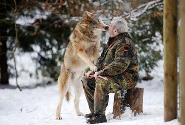 Δεσμοί μεταξύ ανθρώπων και άγριων ζώων (4)