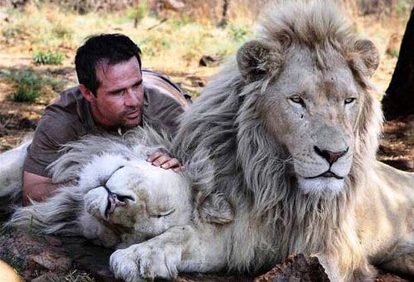 Δεσμοί μεταξύ ανθρώπων και άγριων ζώων (7)