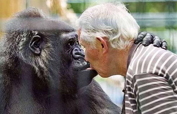 Δεσμοί μεταξύ ανθρώπων και άγριων ζώων (8)