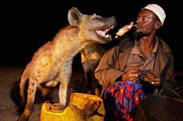 Δεσμοί μεταξύ ανθρώπων και άγριων ζώων (20)
