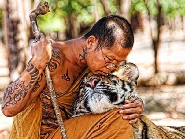 Δεσμοί μεταξύ ανθρώπων και άγριων ζώων (22)