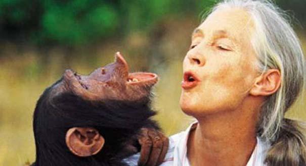 Δεσμοί μεταξύ ανθρώπων και άγριων ζώων (24)