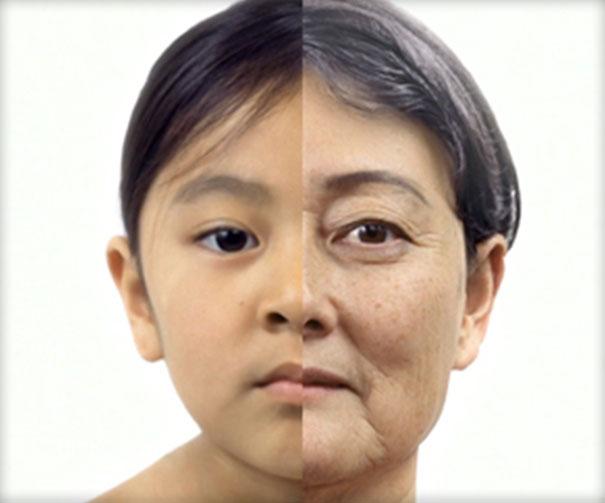 Διαδικασία της γήρανσης