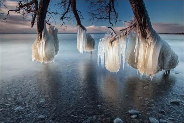 National Geographic 2013: 30+1 εκπληκτικές φωτογραφίες (16)