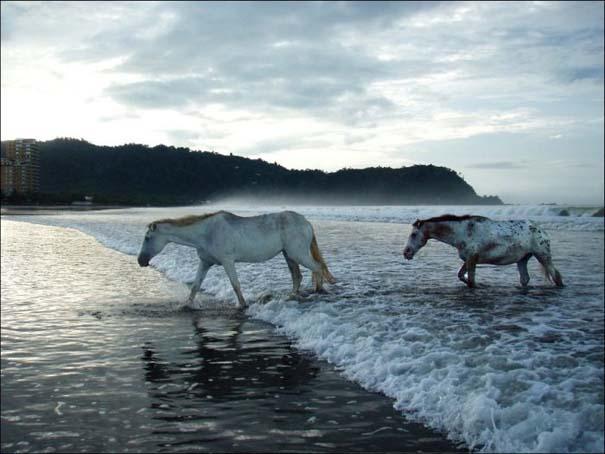 National Geographic 2013: 30+1 εκπληκτικές φωτογραφίες (30)