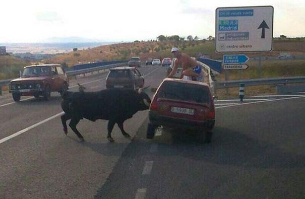 Εν τω μεταξύ, στην Ισπανία... | Φωτογραφία της ημέρας