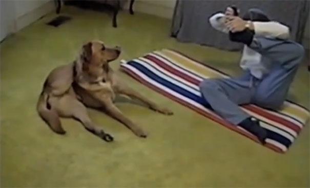 Σκύλος κάνει yoga με την ιδιοκτήτρια του