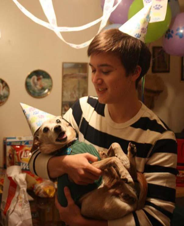 Ζώα που γιορτάζουν τα γενέθλια τους (18)