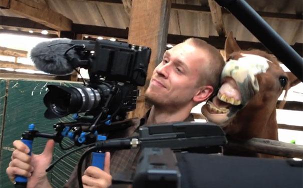 Άλογο ερωτεύτηκε cameraman