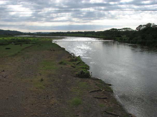 Ατρόμητος ξεναγός σε ποτάμι με κροκόδειλους (6)