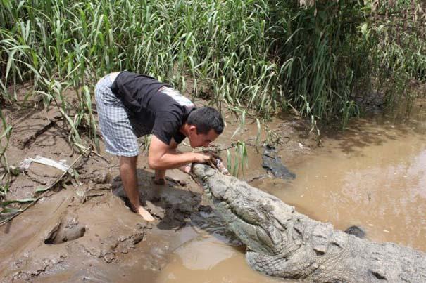 Ατρόμητος ξεναγός σε ποτάμι με κροκόδειλους (7)