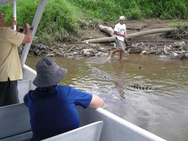 Ατρόμητος ξεναγός σε ποτάμι με κροκόδειλους (9)