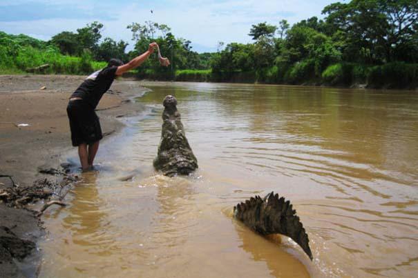Ατρόμητος ξεναγός σε ποτάμι με κροκόδειλους (15)