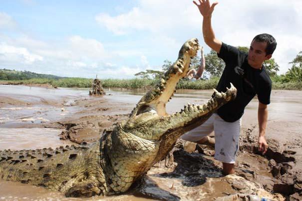 Ατρόμητος ξεναγός σε ποτάμι με κροκόδειλους (20)