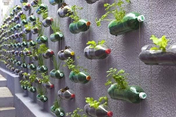 Ένας αλλιώτικος κήπος (3)