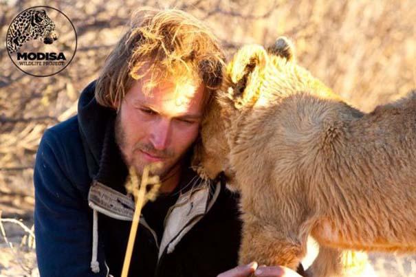 Ο φωτογράφος που έζησε με τα λιοντάρια στην Αφρική (10)