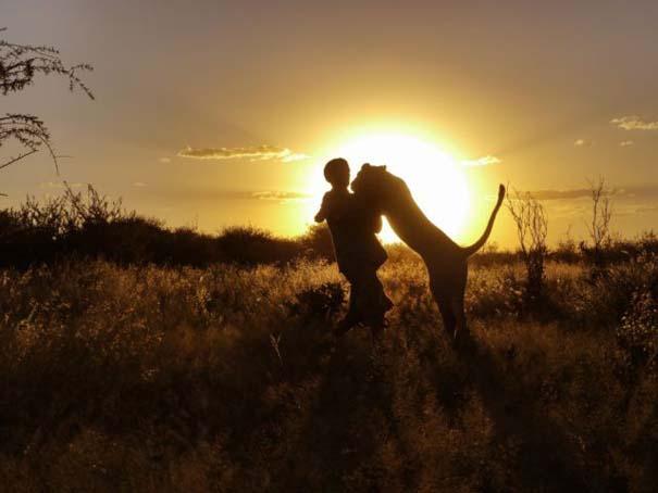 Ο φωτογράφος που έζησε με τα λιοντάρια στην Αφρική (14)