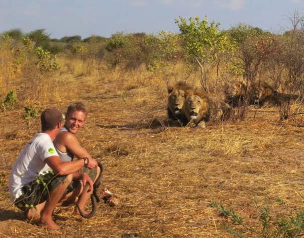 Ο φωτογράφος που έζησε με τα λιοντάρια στην Αφρική (22)