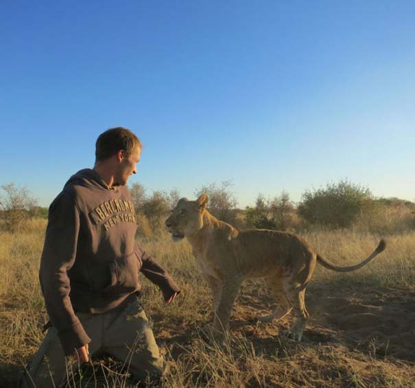 Ο φωτογράφος που έζησε με τα λιοντάρια στην Αφρική (27)