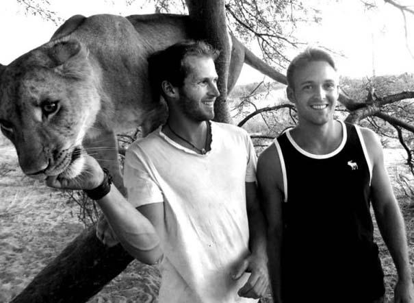 Ο φωτογράφος που έζησε με τα λιοντάρια στην Αφρική (29)