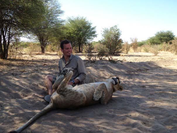 Ο φωτογράφος που έζησε με τα λιοντάρια στην Αφρική (34)
