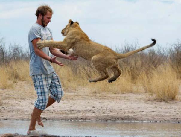 Ο φωτογράφος που έζησε με τα λιοντάρια στην Αφρική (37)