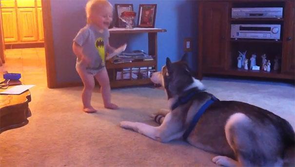 Μωρό και χάσκι ανταλλάσσουν απόψεις