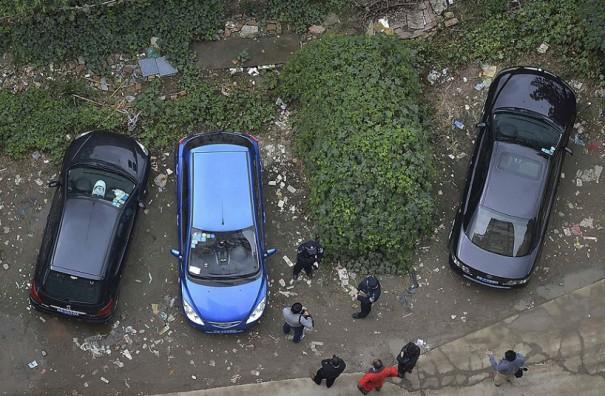 Παρκαρισμένο αυτοκίνητο με... φυσική κουκούλα | Φωτογραφία της ημέρας