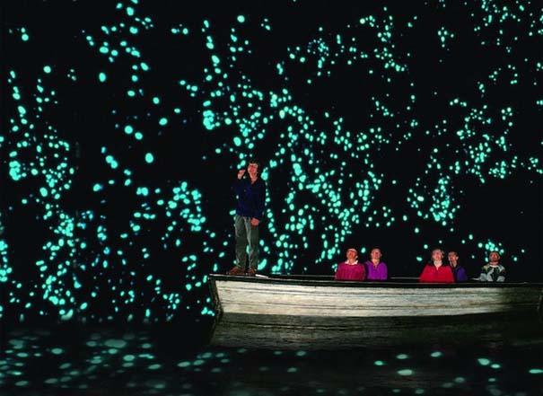 Πυγολαμπίδες δημιουργούν μοναδικό θέαμα σε σπήλαια της Νέας Ζηλανδίας (4)
