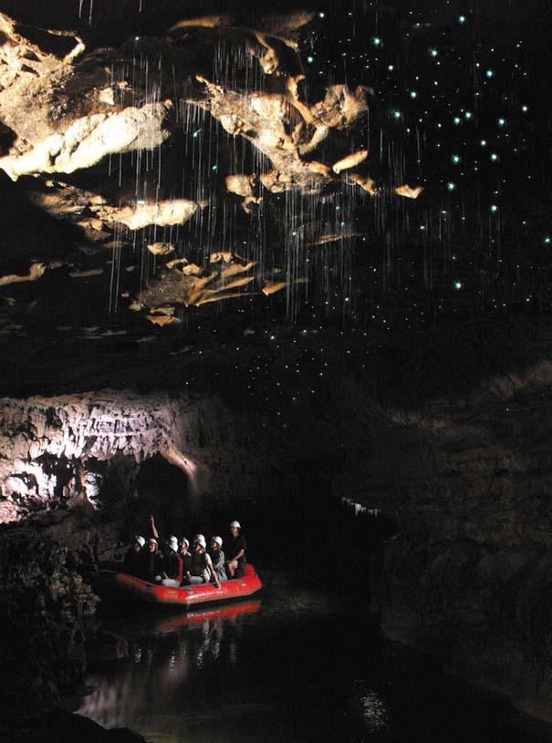 Πυγολαμπίδες δημιουργούν μοναδικό θέαμα σε σπήλαια της Νέας Ζηλανδίας (6)