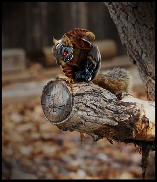 Σκίουρος γίνεται πρωταγωνιστής σε σειρά φωτογραφιών με Photoshop (7)