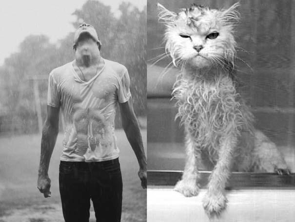 Άνδρες και γάτες στις ίδιες πόζες (5)