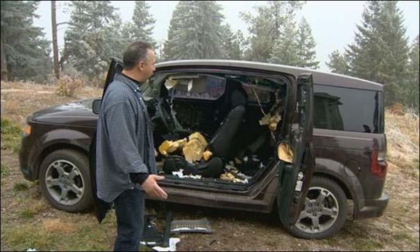 Αυτοκίνητο μετά την επιδρομή αρκούδων (2)