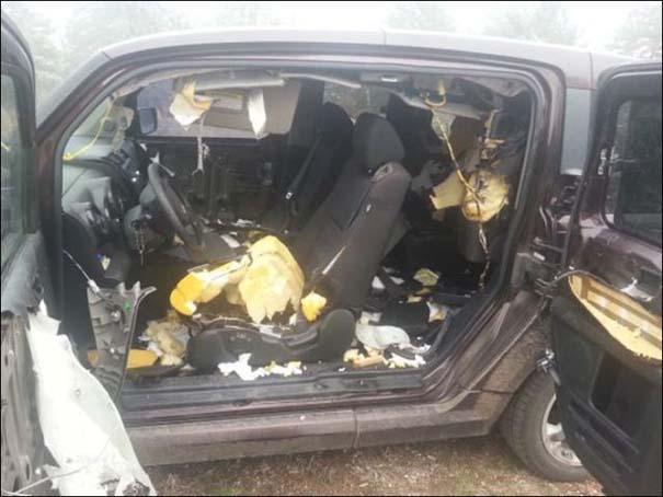Αυτοκίνητο μετά την επιδρομή αρκούδων (3)