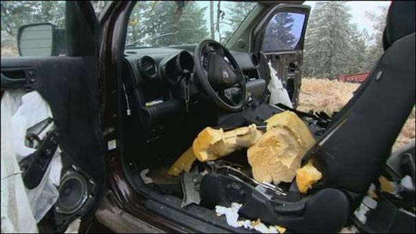 Αυτοκίνητο μετά την επιδρομή αρκούδων (10)