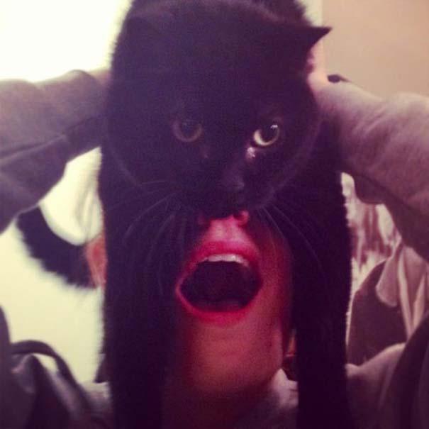 Catman (7)