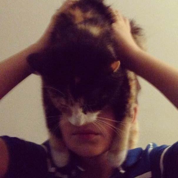 Catman (8)