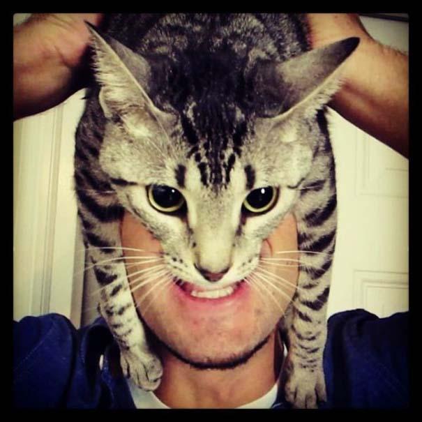 Catman (14)