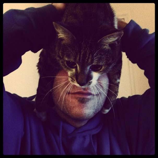 Catman (17)