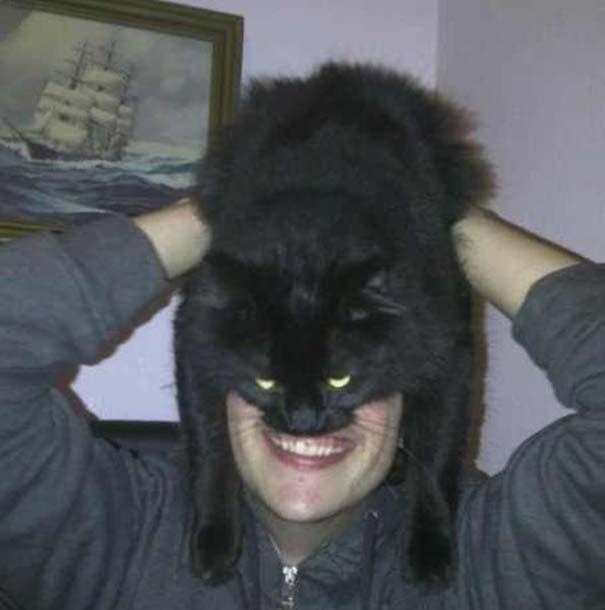 Catman (19)