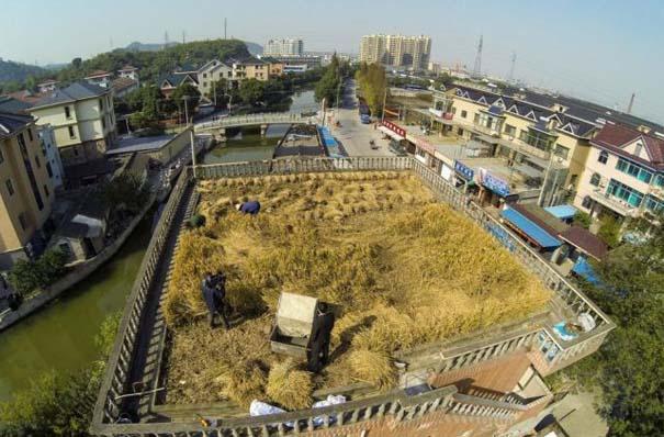Κινέζος αγρότης έλυσε το πρόβλημα χώρου με έναν ασυνήθιστο τρόπο (6)