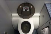 Κρυμμένος θησαυρός σε τουαλέτα αεροπλάνου (1)
