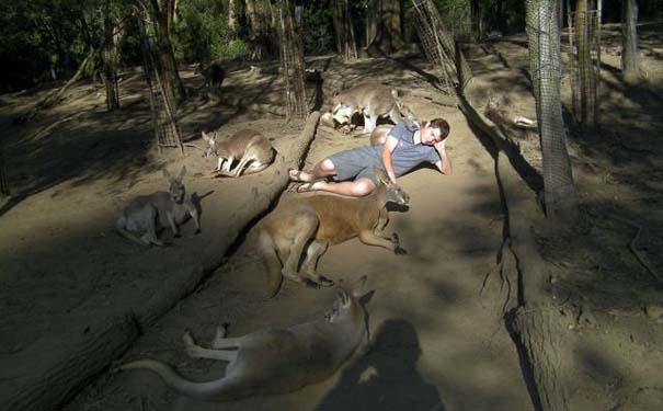 Μόνο στην Αυστραλία (13)