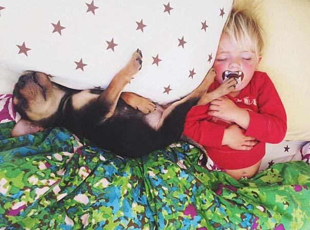 Μωρό κοιμάται με το 2 μηνών κουτάβι του κάθε μέρα (2)
