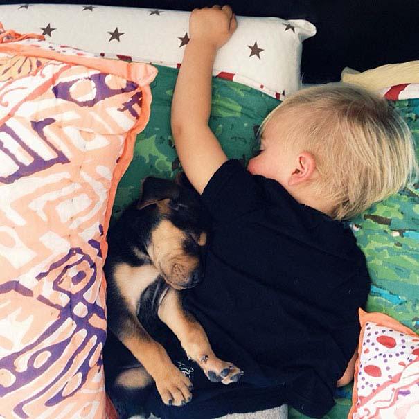 Μωρό κοιμάται με το 2 μηνών κουτάβι του κάθε μέρα (3)