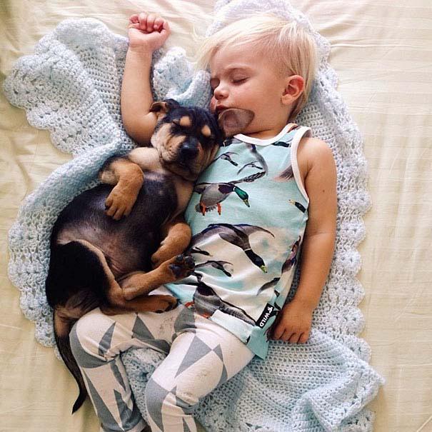 Μωρό κοιμάται με το 2 μηνών κουτάβι του κάθε μέρα (12)